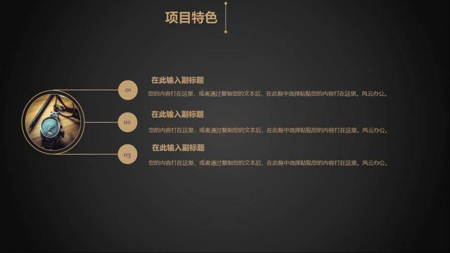 202X年奢华黑金商业融资创业计划书的第7张内容图片
